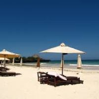 Fantastic places you should visit in Kenya